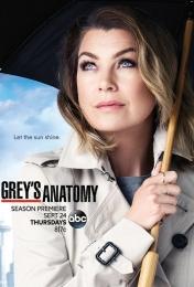 Grey's Anatomy 12 | Bmovies