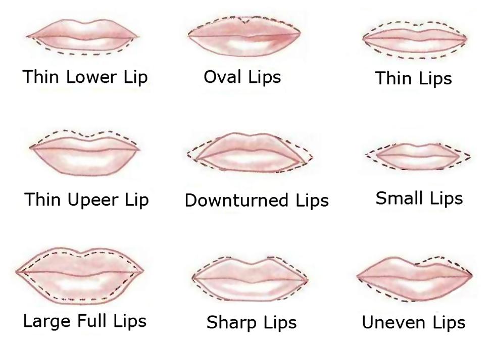 top ten lip shapes sikharamtv