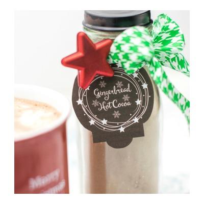 Gingerbread hot cocoa mix