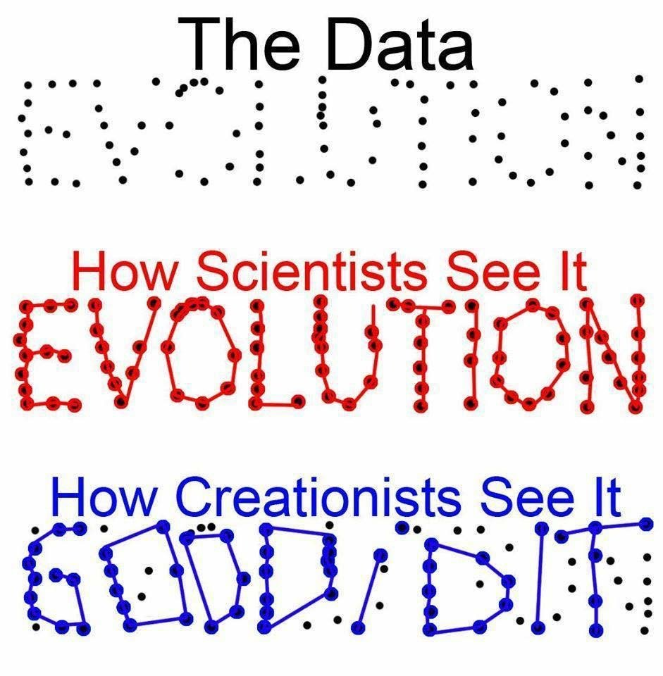 What are a few points to argue against creationism?