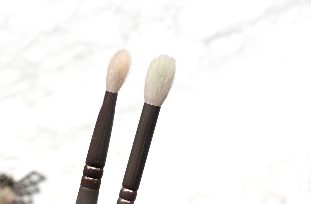 zoeva en taupe 227 soft definer eyeshadow brush 228 luxe crease eyeshadow brush review