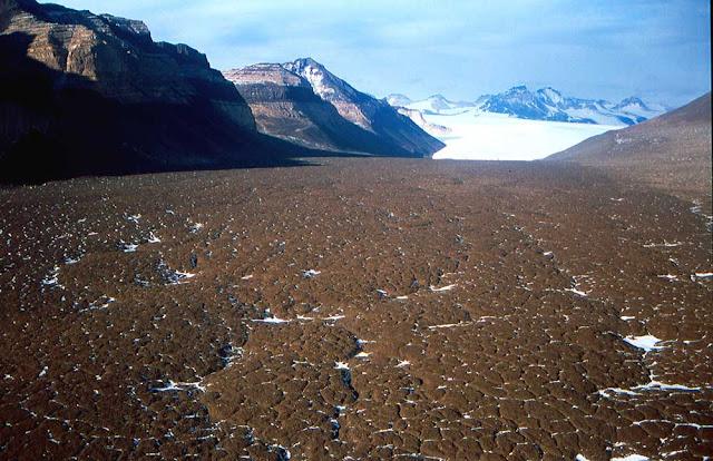 Dry Valleys, os vales secos da Antártida