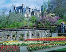 Garden Plot Rejuvenate Senses Biltmore