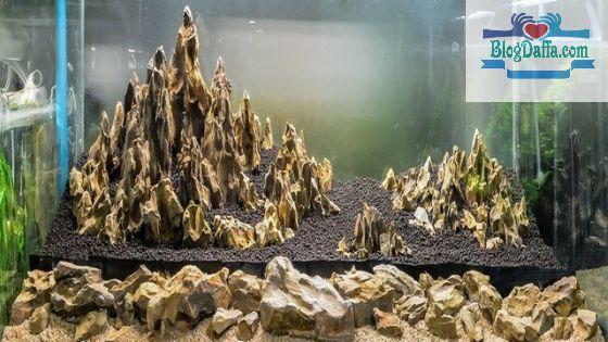 Batu Ryuoh