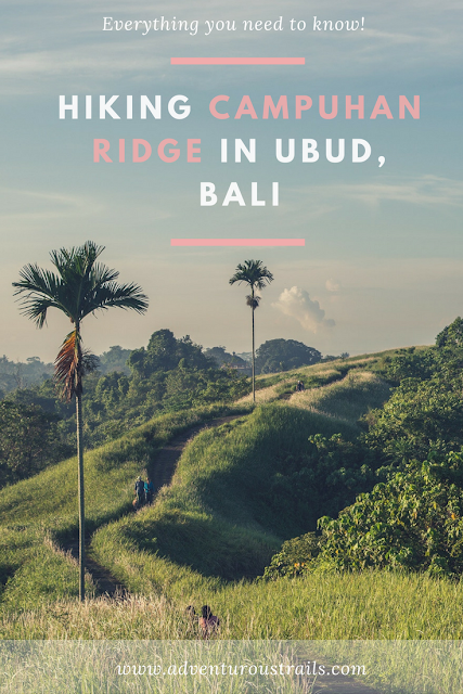 From all the things to do in Bali, Campuhan ridge walk in Ubud is an absolute must. Click to read more!