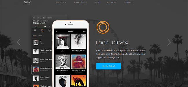 Loop For VOX Review
