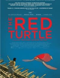 La tortue rouge | Bmovies