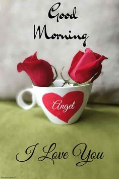100+ Latest Good Morning Quotes Images For Whatsapp (2019