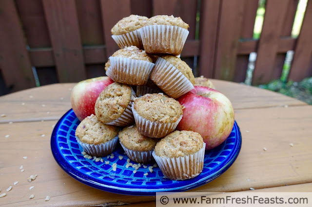 picture of a plate of SweeTango apples and toffee apple mini muffins
