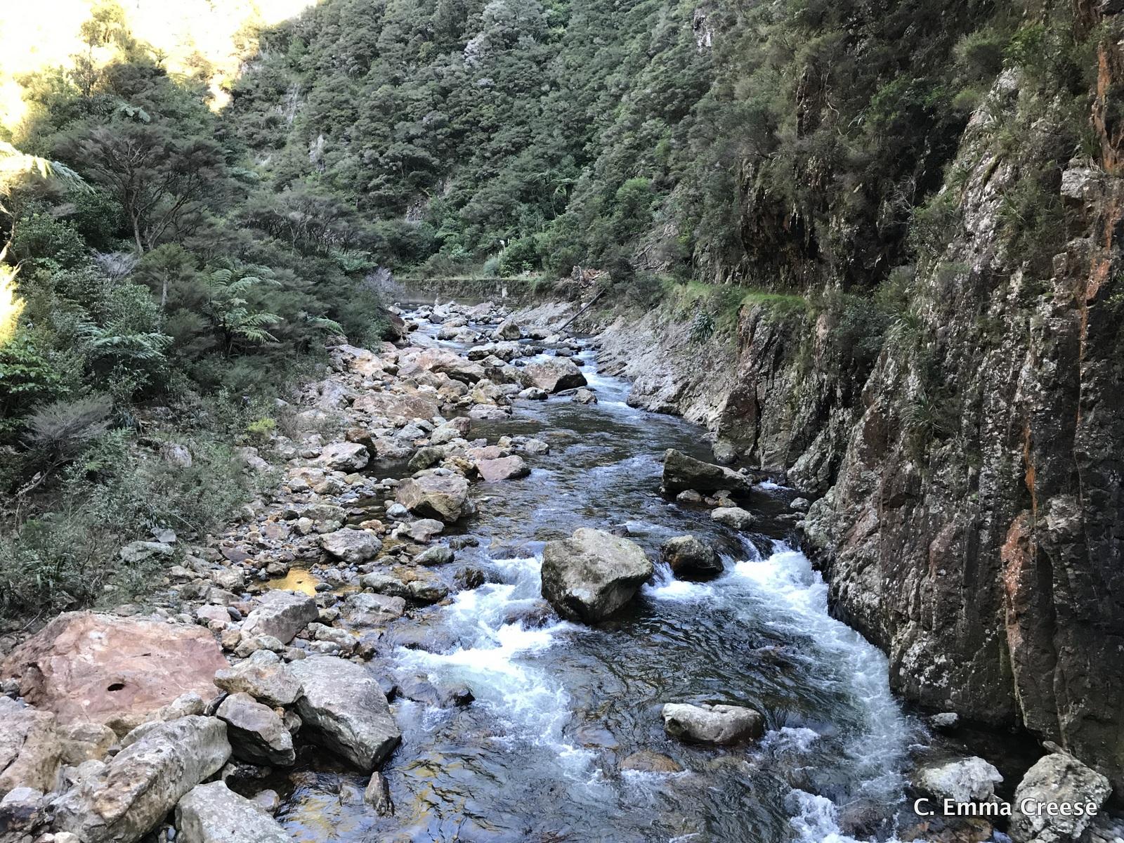 Things to do in New Zealand Karangahake Gorge Adventures of a London Kiwi