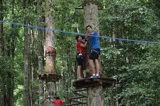 tree top bedugul
