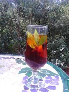 Pimms in the garden Green Fingered Blog