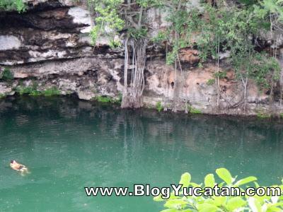 Cenote Kikil Yucatan Mexico