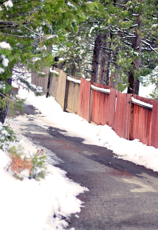 snow on the fence, road