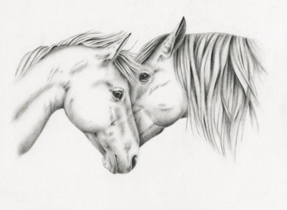رسم الحصان