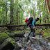 Black Borneo Expedition, Menembus Puncak Gunung Beriun di Jantung Karst Sangkulirang Mangkalihat