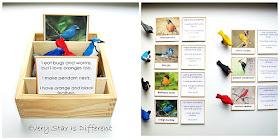 """Montessori Bird """"Who Am I?"""" Cards (Free Printable)"""