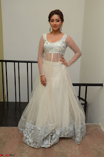 Anu Emmanuel in a Transparent White Choli Cream Ghagra Stunning Pics 017.JPG