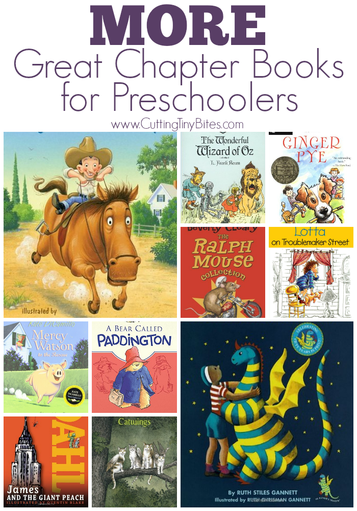Book selections for preschool kids who are ready to listen to chapter books. Some for the very young (2 and 3 year olds) and some for the older preschoolers (4 and 5 year olds). Brief reviews of each!