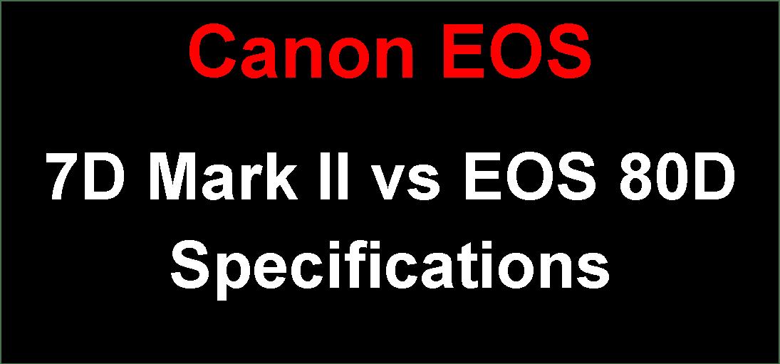 Canon Camera News 2019: Canon EOS 7D Mark II vs EOS 80D