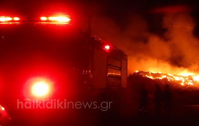 Μεγάλη πυρκαγιά στην Κασσάνδρα - Στην μάχη με την φωτιά και την νύχτα οι πυροσβέστες και οι εθελοντές