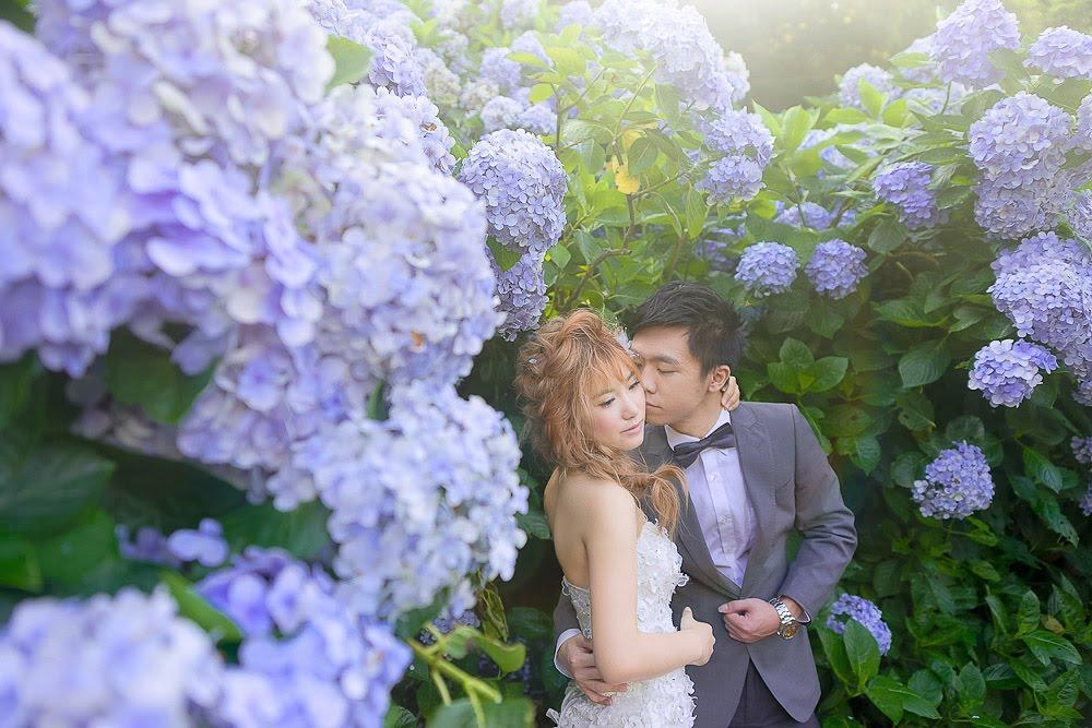 自助婚紗 | 婚紗 | 自主婚紗 | 台北婚紗 | 高家繡球花園 | 冷水坑彎曲車道 | 花卉實驗中心 |