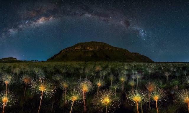 O chuveirinho também foi premiado no Photo NightScape (Foto: Marcio Cabral)