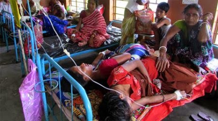 Darjeeling district health administration sought action plan for Japanese Encephalitis