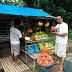 BICOL'S FRESH FRUITS   KBP CSur chair 'Kris Tsuper' stops by roadside fruit stand