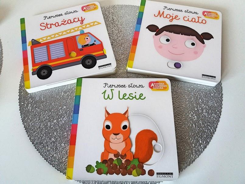 Książki dla maluchów: seria 'Pierwsze słowa'