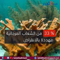 الشعاب المرجانية مهددة بالإنقراض