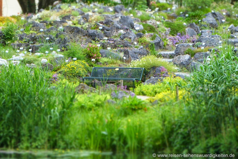 Steingarten mit Parkbank im Botanischen Garten