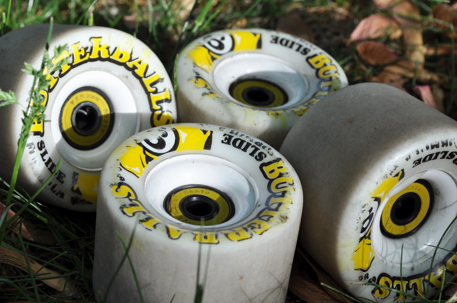 Sector 9 Lacey 2012