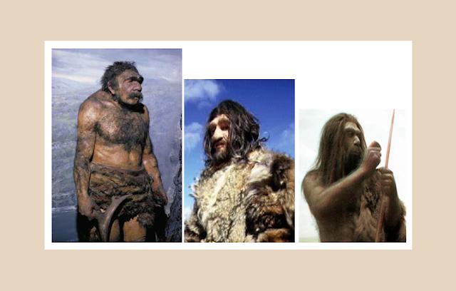 Kesalahan Teori Evolusi