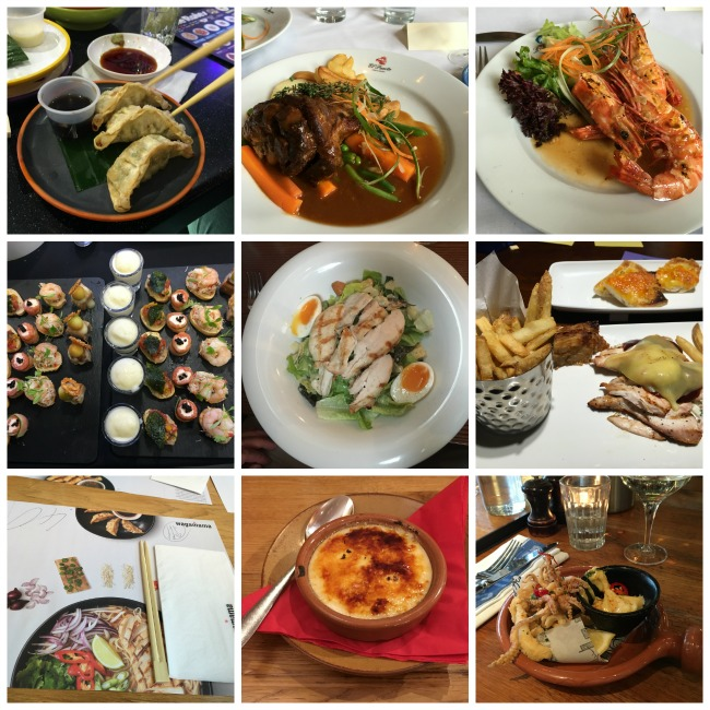 2016-happy-or-sad-a-review-of-our-year-collage-of-plates-of-food