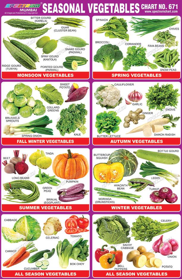 Spectrum Educational Charts: Chart 671 - Seasonal Vegetables