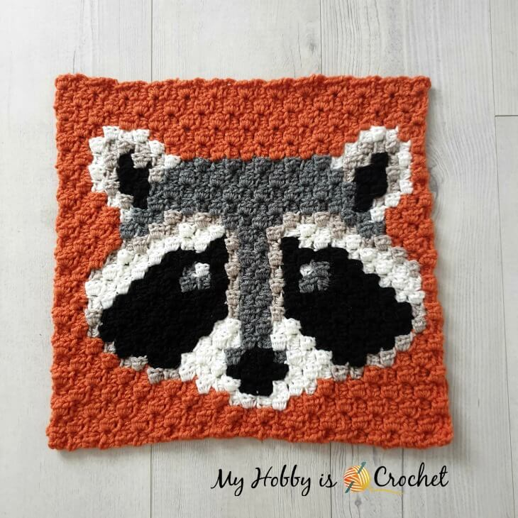 Raccon C2C Square - Free Crochet Pattern