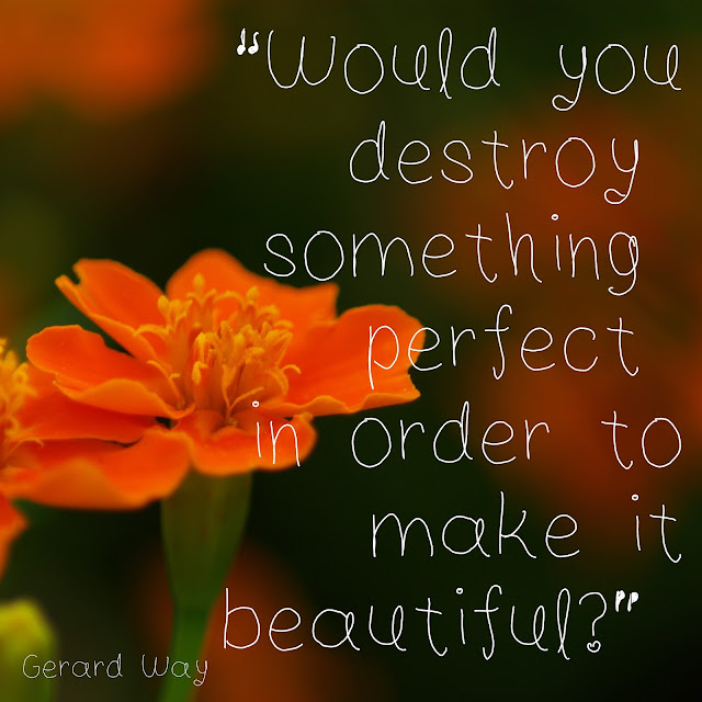 Would you destroy something perfect in order to make it beautiful? - Gerard Way