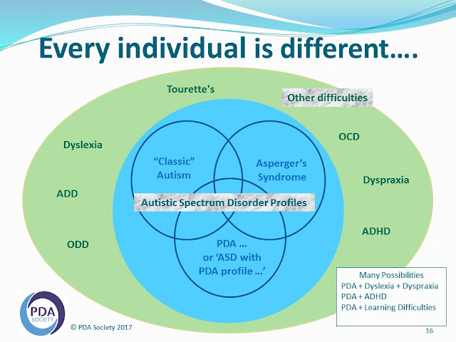 venn diagram showing 3 types of autism