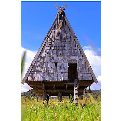 Desain Rumah Adat Sulawesi Tengah