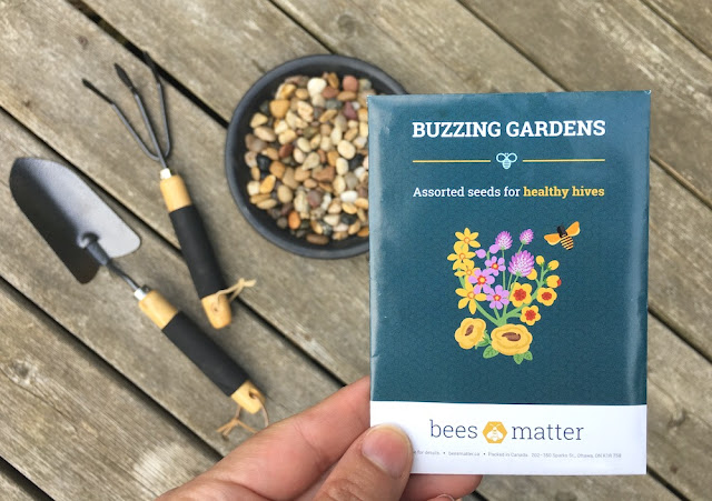 BeesMatter National Planting Week #PlantforBees