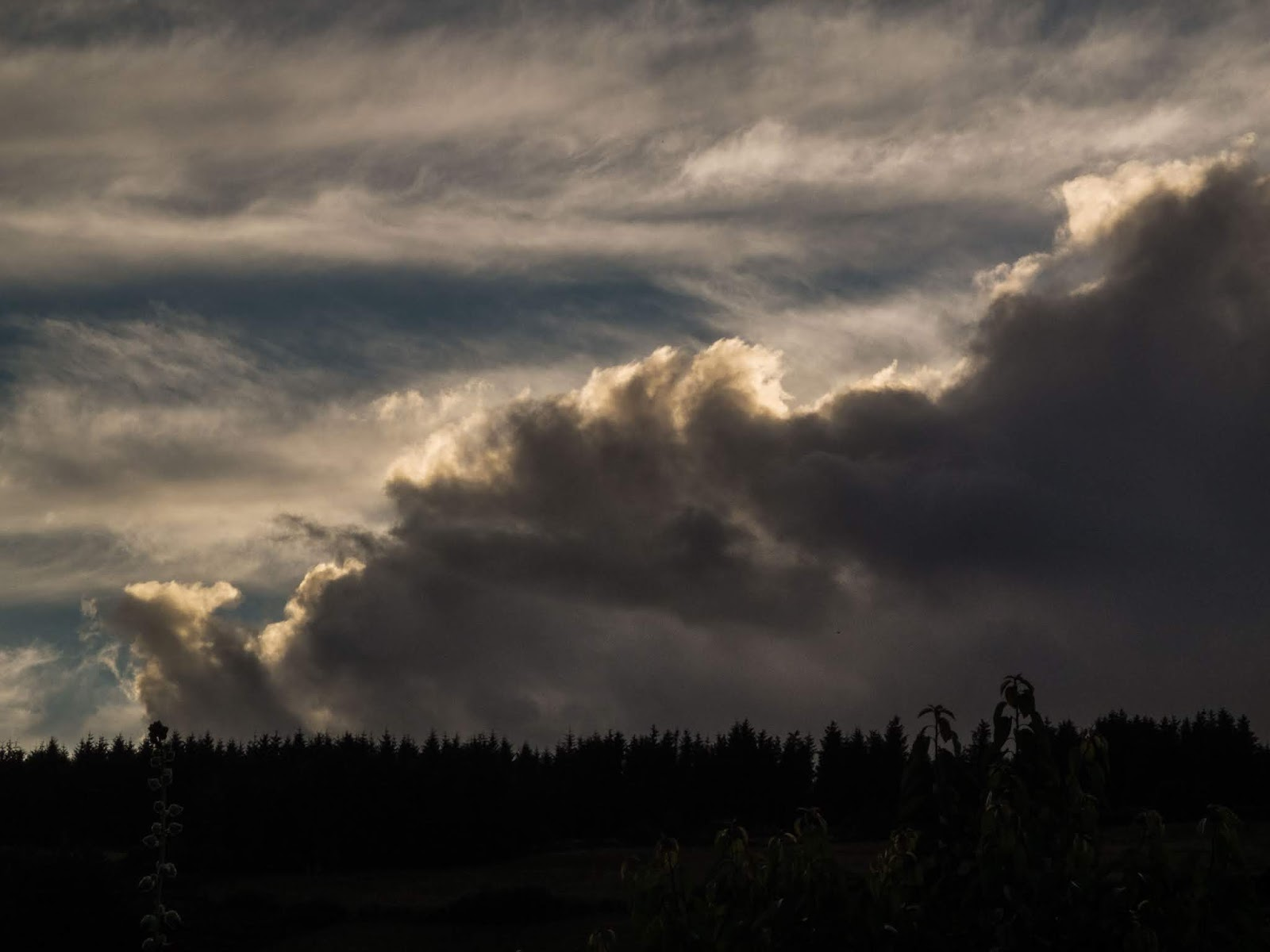 Big, wispy and grey toned sunset cloud over a forestry in the Boggeragh Mountains, Co.Cork.