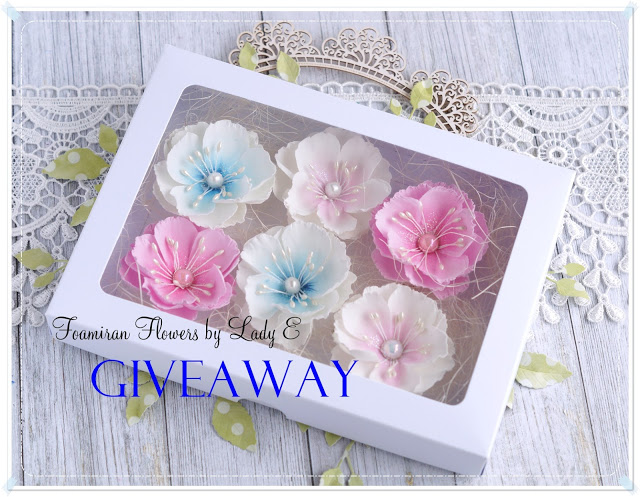Giveaway from LadyE до 20/04