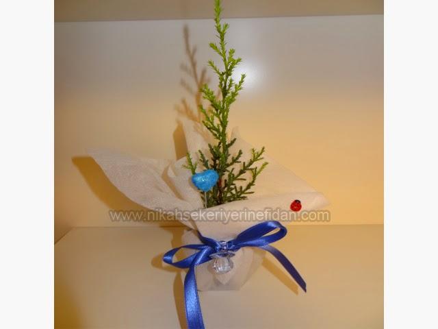 hediyelik nikah fidanı - çam fidanı tasarımları 10