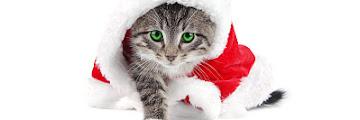 SMS voeux de Noël & messages joyeux Noel mon amour