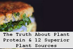 https://foreverhealthy.blogspot.com/2012/04/truth-about-plant-protein-12-superior.html#more