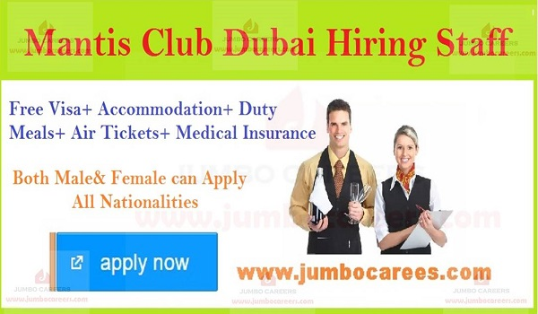 Current jobs in Gulf countries, Recent jobs in Dubai,