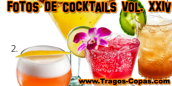 Fotos decoracion de tragos