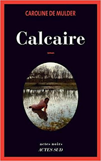 Calcaire de Caroline de Mulder PDF