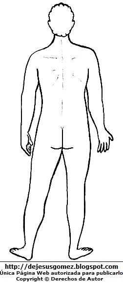 Dibujo del cuerpo humano del hombre para colorear, pintar e imprimir (Vista posterior o Vista Dorsal o detrás). Dibujo del cuerpo humano de Jesus Gómez